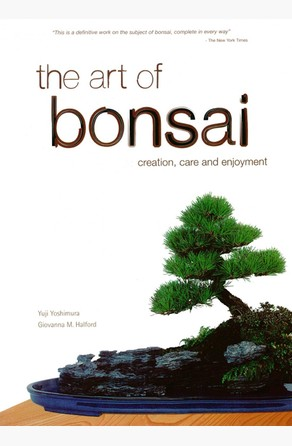 Art of Bonsai Yuji Yoshimura