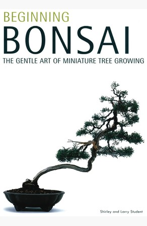Beginning Bonsai Shirley Student