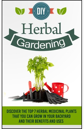 DIY Herbal Gardening - Learn The Benefits Of Planting The Top 5 Medicinal Plants Old Natural Ways