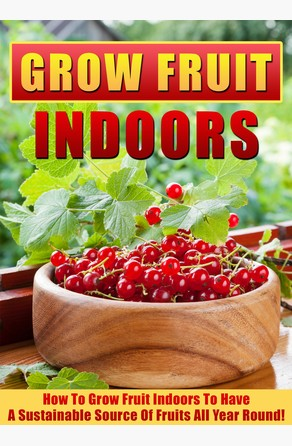 Grow Fruit Indoors How To Grow Fruit Indoors To Have A Sustainable Source Of Fruits All Year Round! Old Natural Ways