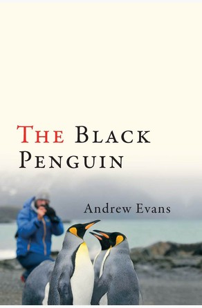 Black Penguin Andrew Evans