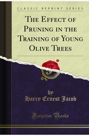 The Effect of Pruning in the Training of Young Olive Trees Harry Ernest Jacob