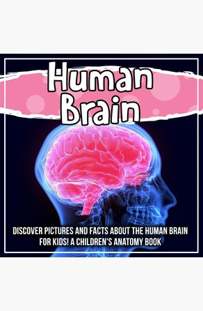 Human Brain: Discover Pictures and Facts About The Human Brain For Kids! A Children's Anatomy Book Bold Kids