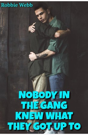 Nobody In The Gang Knew What They Got Up To Robbie Webb
