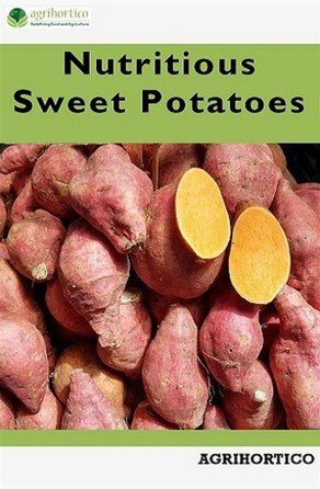 Nutritious Sweet Potatoes Agrihortico CPL