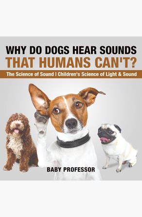 Why Do Dogs Hear Sounds That Humans Can't? - The Science of Sound | Children's Science of Light & Sound Baby Professor