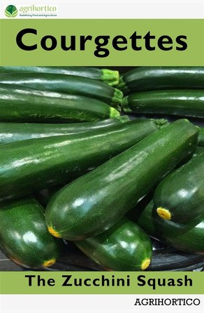 Courgettes Agrihortico CPL