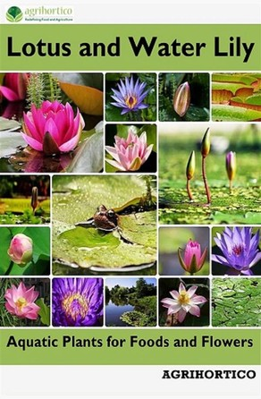 Lotus and Water Lily Agrihortico CPL