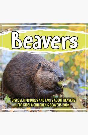 Beavers: Discover Pictures and Facts About Beavers For Kids! A Children's Beavers Book Bold Kids