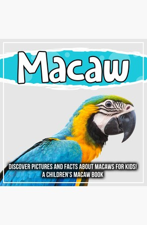 Macaw: Discover Pictures and Facts About Macaws For Kids! A Children's Macaw Book Bold Kids