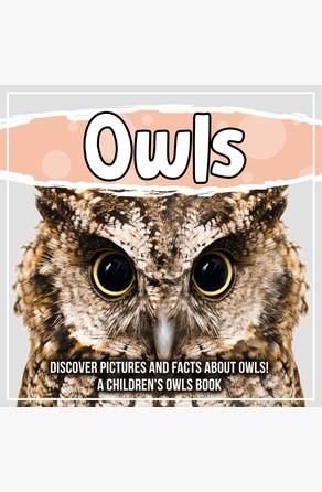 Owls: Discover Pictures and Facts About Owls! A Children's Owls Book Bold Kids
